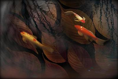 Photograph - Autumn Koi by Eena Bo