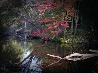 Photograph - Autumn Lagoon by Michael L Kimble