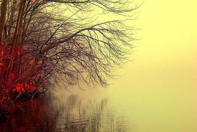 Eagls Photograph - Autumn Lake by Aron Chervin