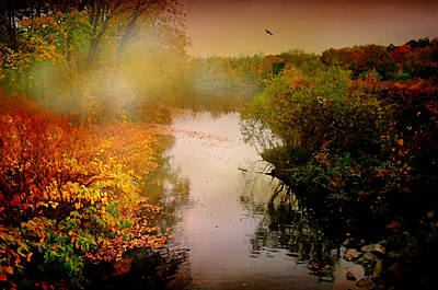 Photograph - Autumn Lake by Diana Angstadt