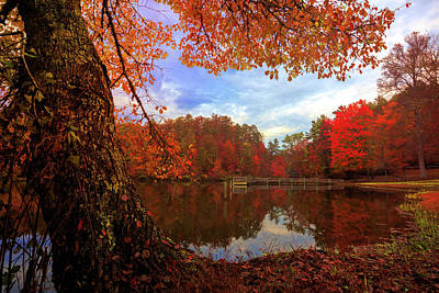 Photograph - Autumn Lake In Deep Color by Debra and Dave Vanderlaan