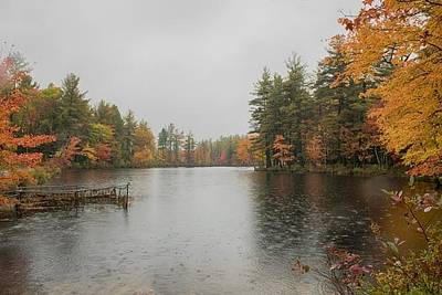 Photograph - Autumn Lake In Rain by Patricia Dennis