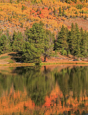 Photograph - Autumn Lake Reflections by Dan Sproul