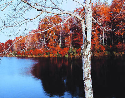Photograph - Autumn Lake by Roger Bester