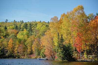 Photograph - Autumn Lake Scene by Cheryl Baxter