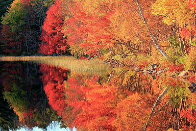 Photograph - Autumn Lake Scenery by Gary Corbett