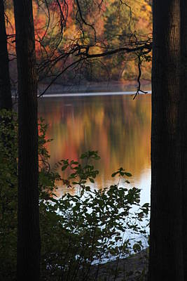 Photograph - Autumn Lake by Vadim Levin