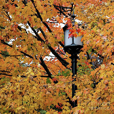 Photograph - Autumn Lamppost IIi by Mary Haber