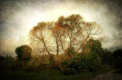 Photograph - Autumn Landscape by Cynthia Lassiter