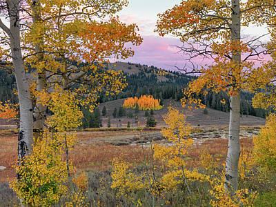 Photograph - Autumn Landscape by Leland D Howard