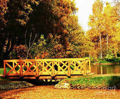 Photograph - Autumn Landscape With Bridge by Irina Afonskaya