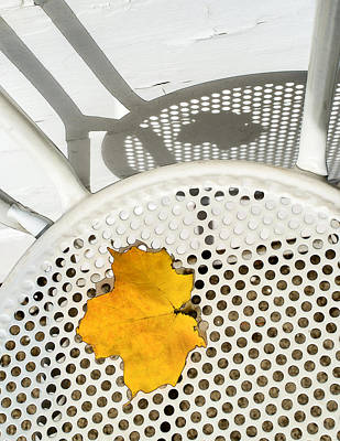 Photograph - Autumn Leaf And Shadows by Gary Slawsky