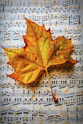 Note Photograph - Autumn Leaf On Sheet Music by Garry Gay