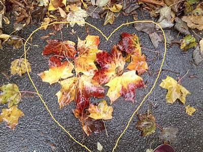 Photograph - Autumn Leaf Photo 816 With Heart Drawn In by Julia Woodman
