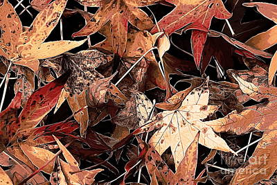 Photograph - Autumn Leaves 1 by Erica Hanel
