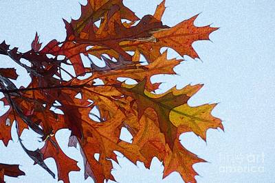 Photograph - Autumn Leaves 21 by Jean Bernard Roussilhe