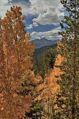 Photograph - Autumn Leaves And Longs Peak by Dan Sproul