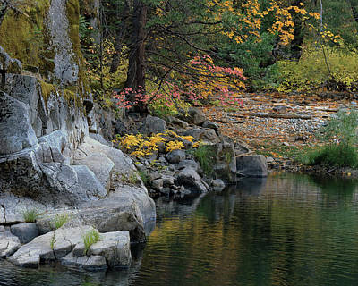 Autumn Leaves And Merced River, Mariposa County, California Art Print by Troy Montemayor