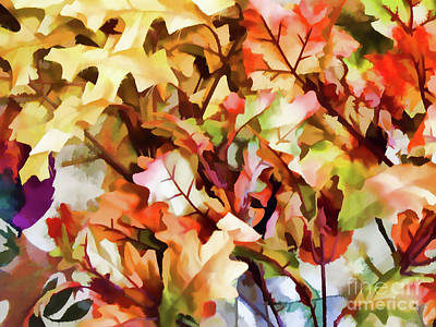 Photograph - Autumn Leaves by D Hackett