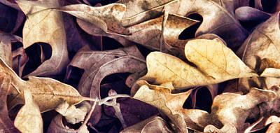 Wall Art - Digital Art - Autumn Leaves by Dene Brock
