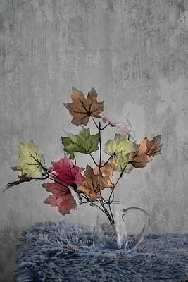 Photograph - Autumn Leaves by Elvira Pinkhas