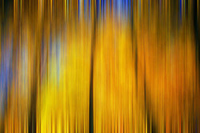 Photograph - Autumn Leaves Fall Colors Digital Abstracts Motion Blur by Rich Franco