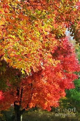 Autumn Leaves Art Print by Hideaki Sakurai