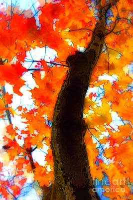 Photograph - Autumn Leaves by Jeff Breiman