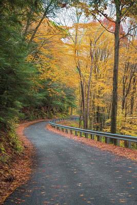Photograph - Autumn Leaves by John M Bailey