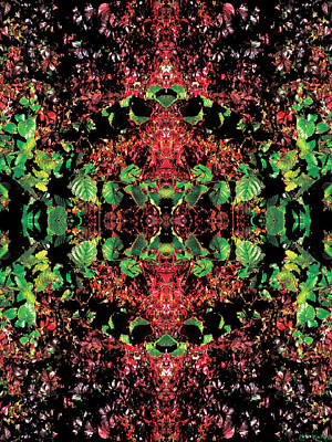 Fairy Photograph - Autumn Leaves Mandala by Celtic Artist Angela Dawn MacKay