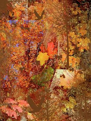 Digital Art - Autumn Leaves by Nadine Berg