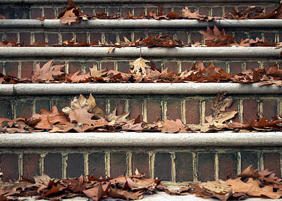 Photograph - Autumn Leaves On Stairs by Joseph Skompski