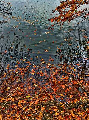 Lovely Lavender - Autumn Leaves on the Lake by Doug Swanson