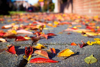Autumn Leaves On The Sidewalk Art Print
