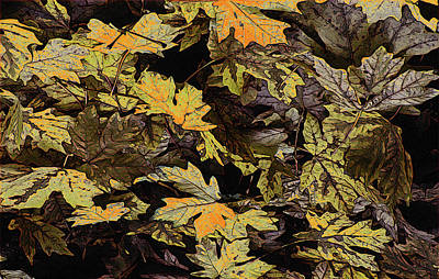 Digital Art - Autumn Leaves by Richard Farrington