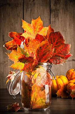 Gourd Photograph - Autumn Leaves Still Life by Amanda Elwell