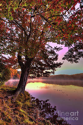 Photograph - Autumn Leaves Tree At Blue Ridge Lake by Dan Carmichael