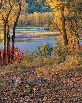 Autumn Photograph - Autumn by Leland D Howard