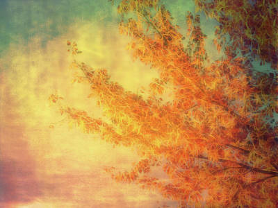 Photograph - Autumn Leves Of Gold by Ann Powell