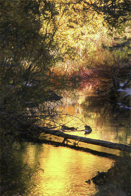 Photograph - Autumn Light by Donna Kennedy