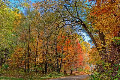 Photograph - Autumn Light by Rodney Campbell