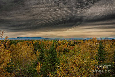 James Brown Photograph - Autumn Lookout by James Brown