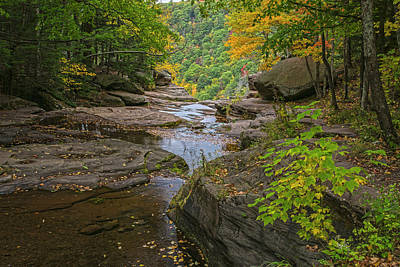 Photograph - Autumn Low Flow At Kaaterskill by Angelo Marcialis