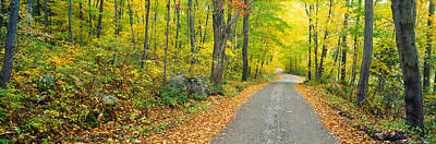 Multi Colored Photograph - Autumn, Macedonia Brook State Park by Panoramic Images