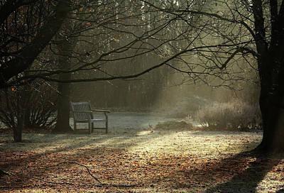 Photograph - Autumn Magic by Debbie Oppermann