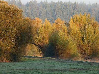 Photograph - Autumn Magic by I'ina Van Lawick