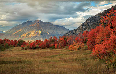 Photograph - Autumn Magic In The Wasatch. by Johnny Adolphson