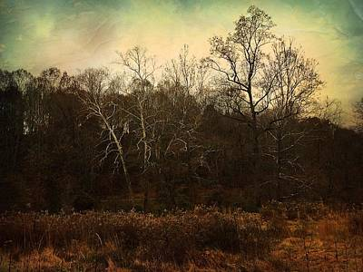 Photograph - Autumn Majesty  by Delona Seserman