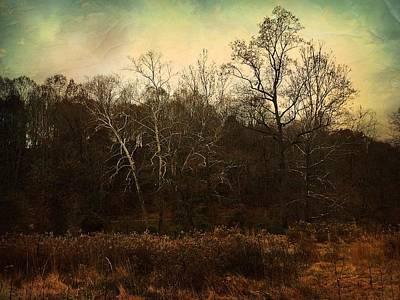Photograph - Autumn Majesty  by Delona Seserman