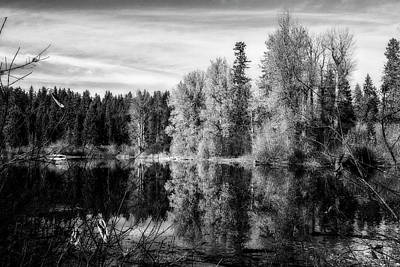 Photograph - Autumn Makes An Appearance At Fish Lake Bw by Belinda Greb